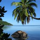 Volunteer Abroad in Seychelles with GVI