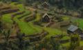 Volunteer Nepal - raleigh