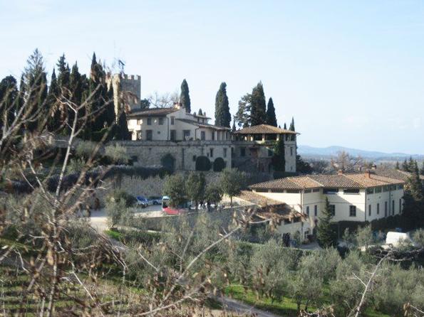 Vineyard in Chianti, Italy