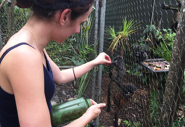 Feeding Chichico monkeys at YanaCocha in Ecuador