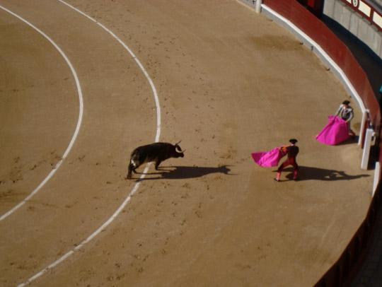 Bull fight at Plaza de Toros in Madrid, Spain.