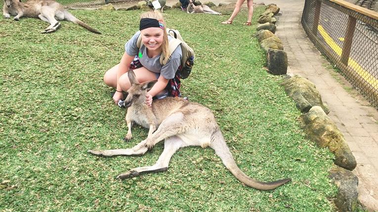 Kangaroo at Currumbin Wildlife Sanctuary in Gold Coast, Australia