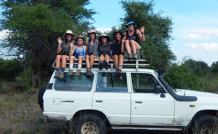 Student volunteers sitting on a land cruiser in the bush of Botswana