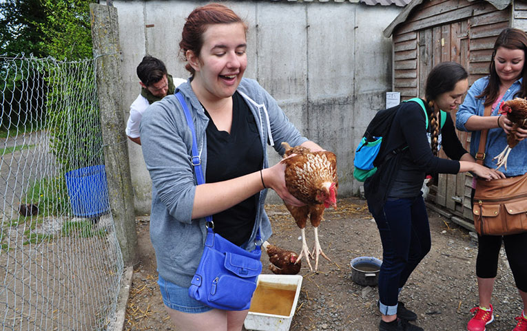 Girl holding a chicken at Causey Farm in Ireland