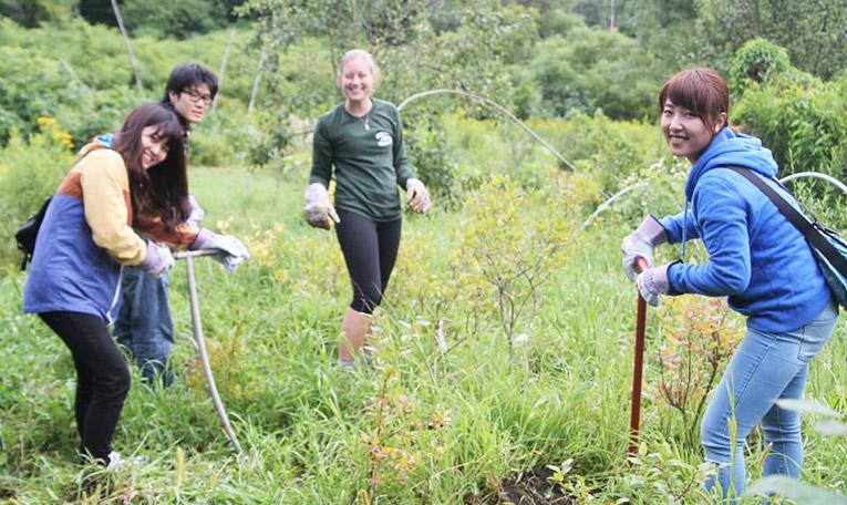 Volunteers working at Rock Point School in Burlington, Vermont