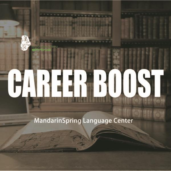 The Career Boost Program