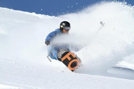 Marmot skiing