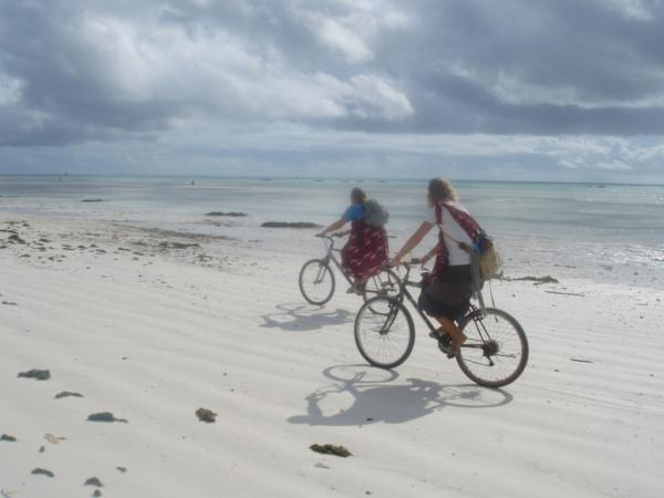Volunteers riding bicycles