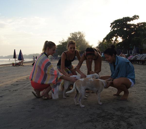 Internship in thailand