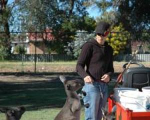 Animal Care in a Wildlife Park in Bunbury, Australia | travellersworldwide.com