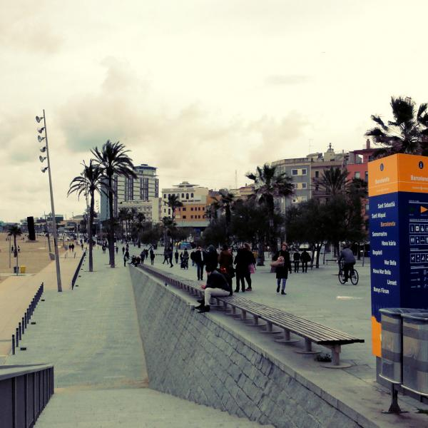 Beach in Barcelona - Intern in Barcelona - Adelante Abroad