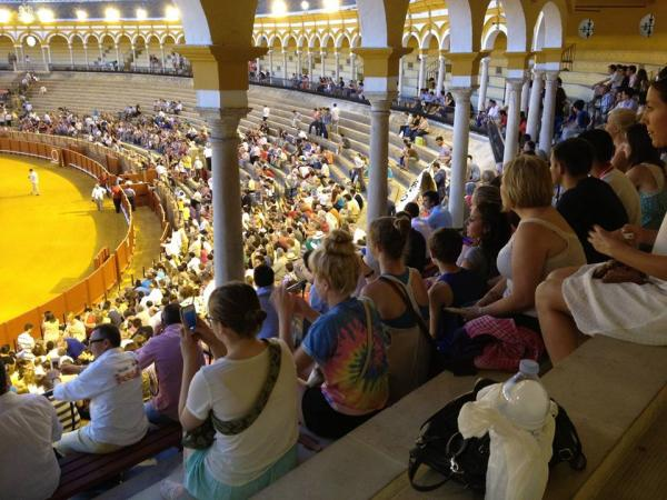 Seville, Study Abroad, Group Study, Intern, Spain, Bullfight,
