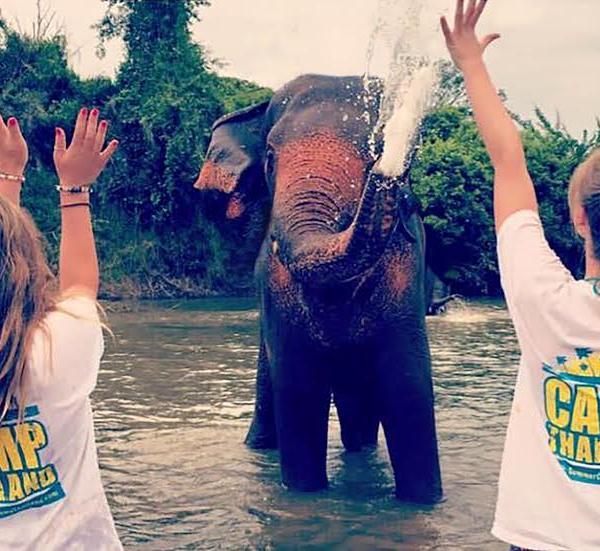Camp Thailand Elephant Conservation Surin Project Thailand