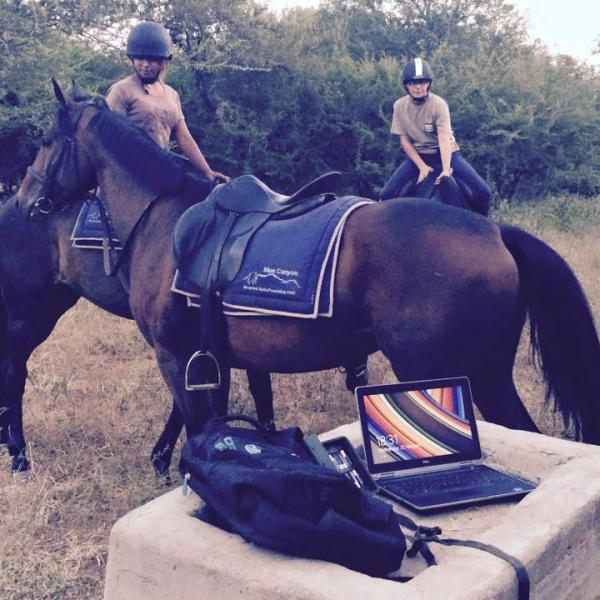 Checking camera traps on horseback