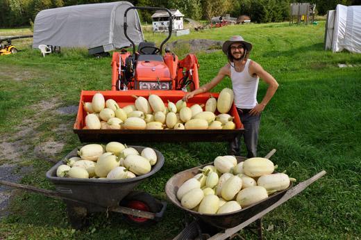 Farmstay in Canada