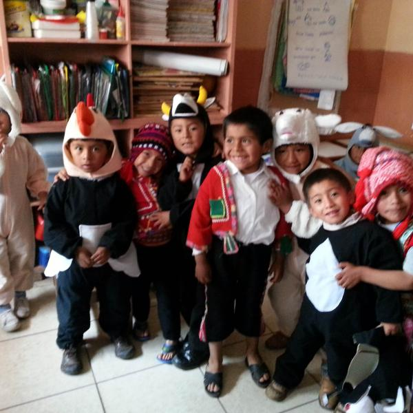peru-volunteer-abroad-project