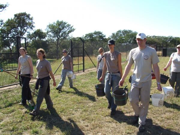 Volunteers at the Moholoholo Wildlife Rehabilitation Centre