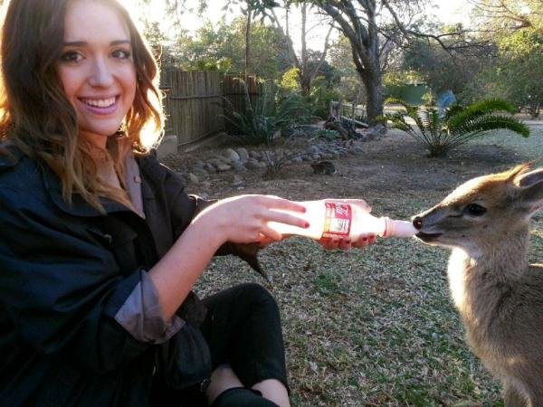 Volunteer feeding animals in South Africa