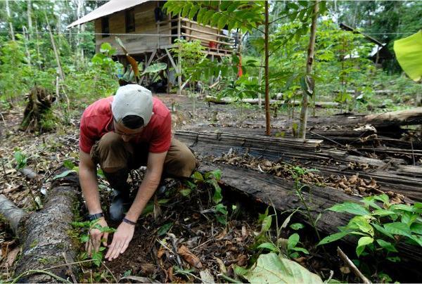 amazon-volunteer-earth