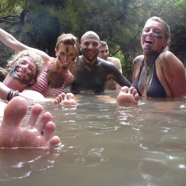 Stray | Thermal Pools Rotorua New Zealand
