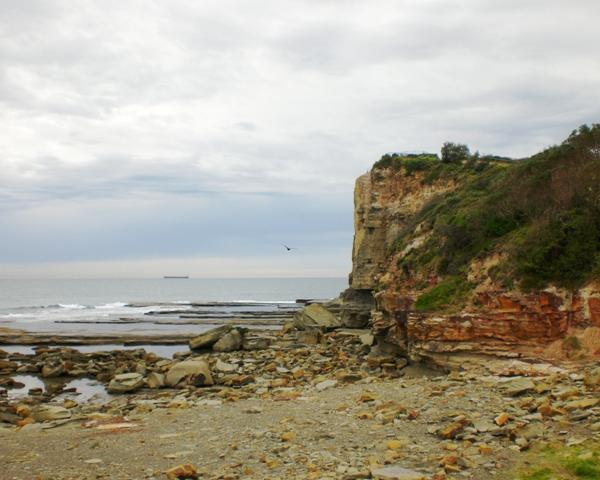 Intern in Sydney