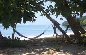 Scuba Dive Resort Management Internship in Malaysia | travellersworldwide.com