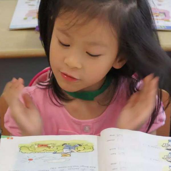 Chinese Primary School Student