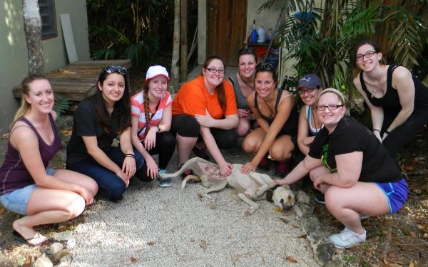 vet tech students meet their first Belizean dog