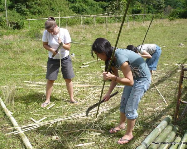 Outdoor Work Program in Thailand with Love Volunteers!