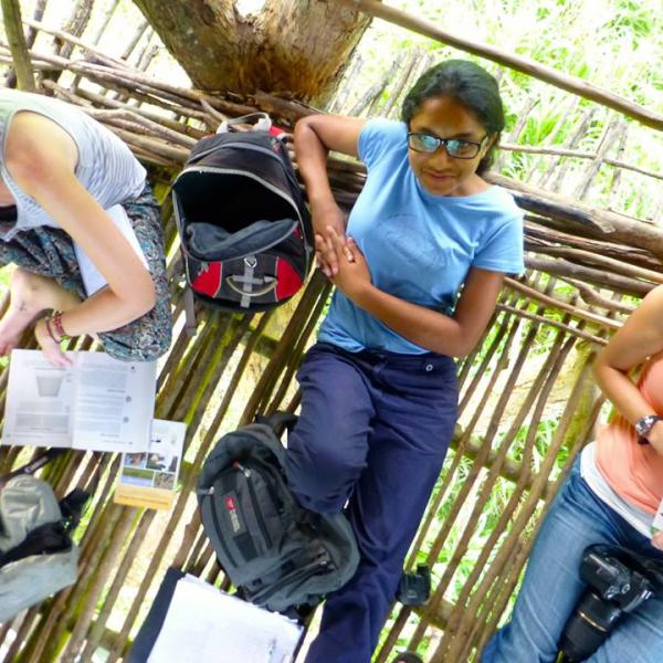 volunteers Tree House research vantage point