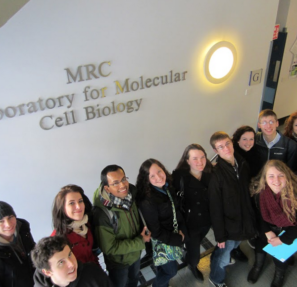 Study Biomedicine in Copenhagen