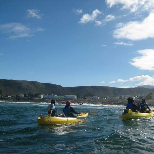 Sea Kayaking at Hermanus