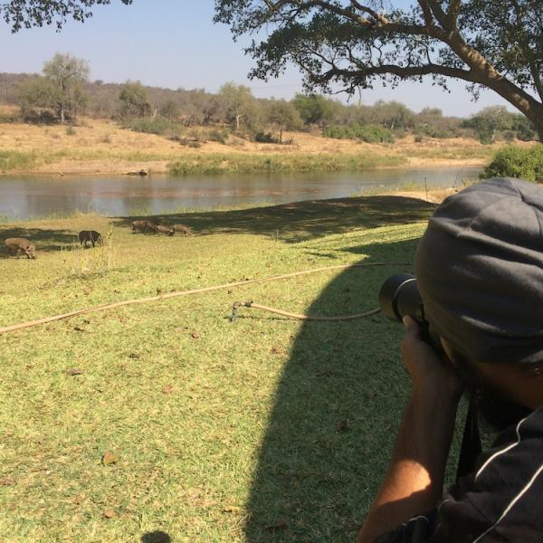 Students filming warthogs in front of Beyond Borders Wildlife Film School