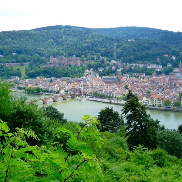 Excursion to Heidelberg