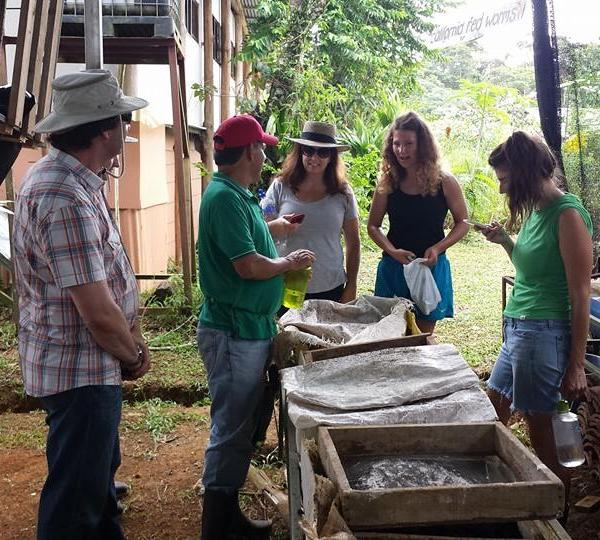 Agro-Ecology Program in Costa Rica with Love Volunteers!