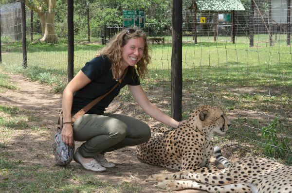 volunteering at the cheetah sanctuary