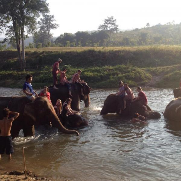 Elephant Village in Thailand with Love Volunteers!