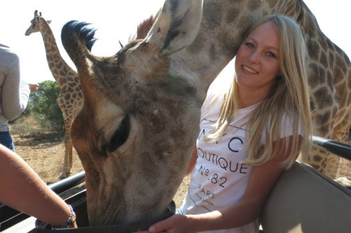 girl with giraffe