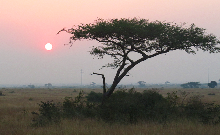 Nothing can touch the magnificence of an African sunset (or sunrise for that matter).