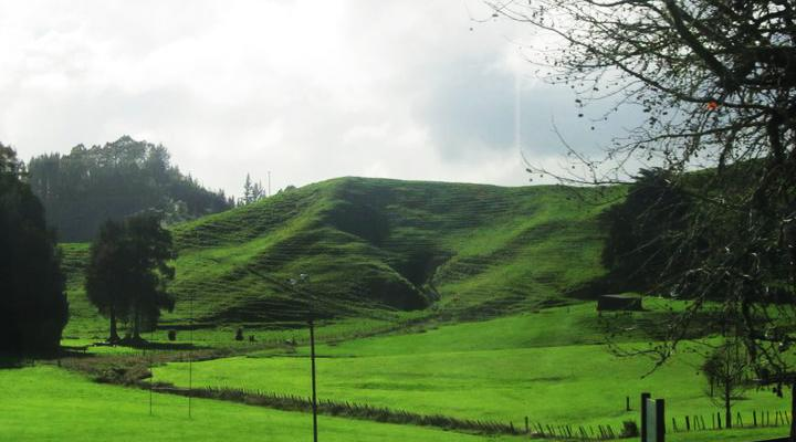 The beautiful New Zealand countryside.