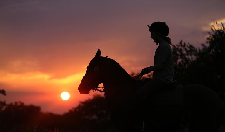 An intern enjoys a sunset ride at Ants Hill