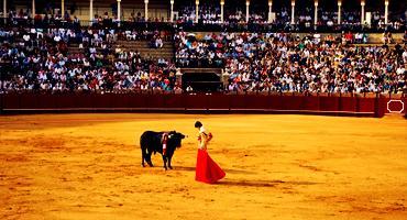 Bullfighting ring in Spain