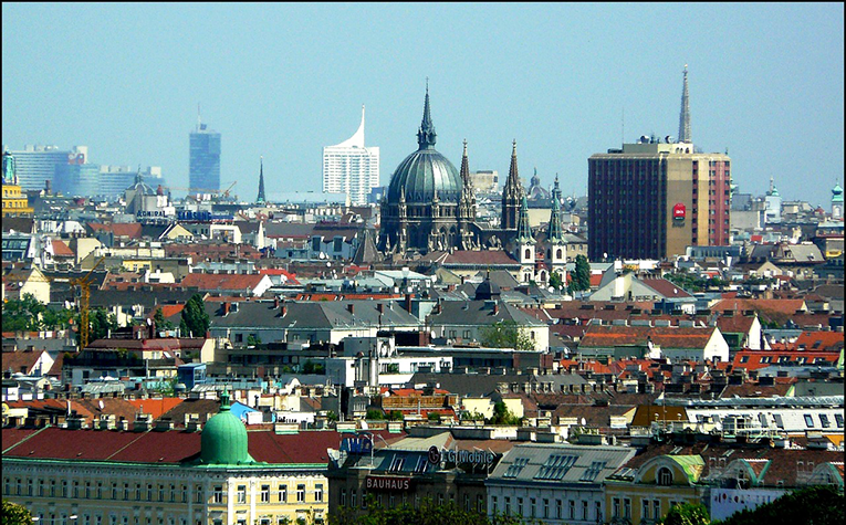 Vienna City View