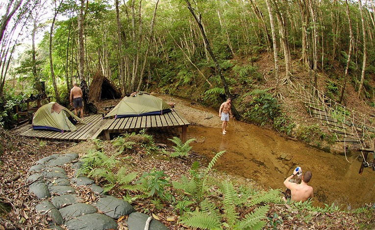 Outdoor trek in a forest in Okinawa, Japan