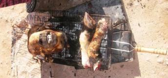 Moroccon Food Tasting