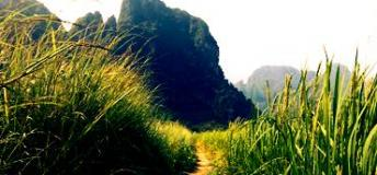 One of the Trails Passing Through the Beautiful Countryside of Laos