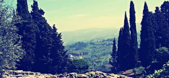 Volunteer abroad in Siena, Italy.