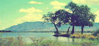 A beautiful landscape in Zambia